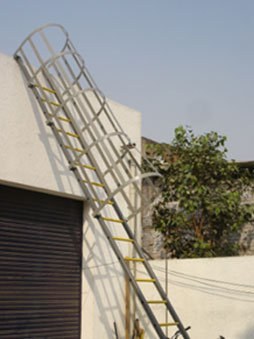 Cage Type Total FRP Ladder